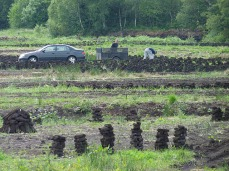 Collecting peat from the bog