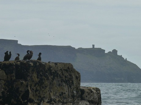 Seabirds and ancient ruins - says it all