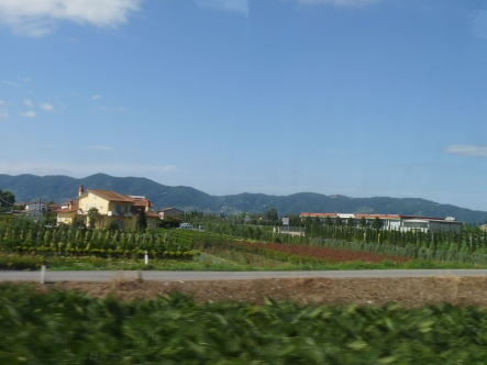 A short trip through the Italian countryside takes us on to Florence