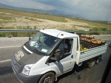Taking pumpkins and peaches to market
