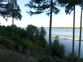 The view from the deck of the B&B
