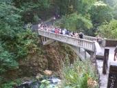 The bridge is popular