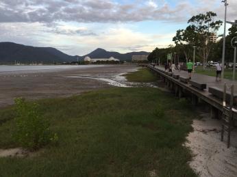 Cairns boardwalk