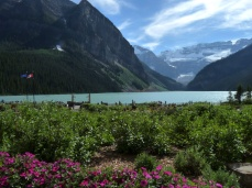 As is the view of Lake Louise