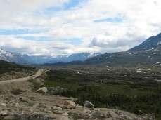Just love the Yukon